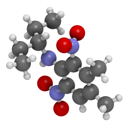 hydrogen: Pendimethalin herbicide molecule. 3D rendering.   Atoms are represented as spheres with conventional color coding: hydrogen (white), carbon (grey), oxygen (red), nitrogen (blue). Stock Photo
