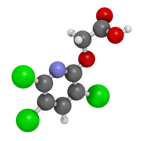 herbicide: Triclopyr herbicide (broadleaf weed killer) molecule. 3D rendering.  Atoms are represented as spheres with conventional color coding: hydrogen (white), carbon (grey), oxygen (red), nitrogen (blue), chlorine (green). Stock Photo
