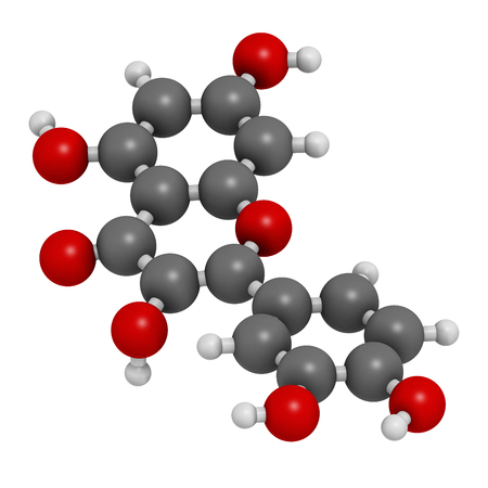 supplementation: Quercetin plant molecule. 3D rendering.  Atoms are represented as spheres with conventional color coding: hydrogen (white), carbon (grey), oxygen (red). Stock Photo