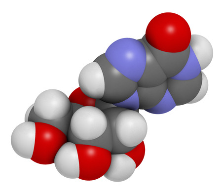 monophosphate: Inosine nucleoside molecule. 3D rendering.  Found in tRNA. Used as fitness nutritional supplement.  Atoms are represented as spheres with conventional color coding: hydrogen (white), carbon (grey), oxygen (red), nitrogen (blue). Stock Photo