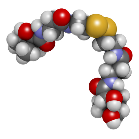 sulfur: Pantethine (dimeric vitamin B5) molecule. 3D rendering.  Used in dietary supplements. Atoms are represented as spheres with conventional color coding: hydrogen (white), carbon (grey), oxygen (red), nitrogen (blue), sulfur (yellow).