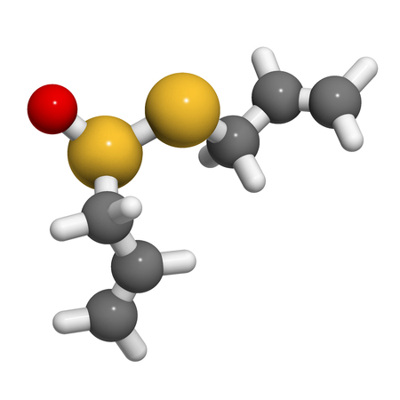 antioxidant: Allicin garlic molecule. 3D rendering.  Formed from alliin by the enzyme alliinase. Believed to have a number of positive health effects. Atoms are represented as spheres with conventional color coding: hydrogen (white), carbon (grey), oxygen (red), sulfu