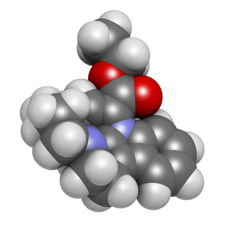 alkaloid: Vinpocetine molecule. 3D rendering.  Semisynthetic vinca alkaloid derivative, used as drug and as dietary supplement.  Atoms are represented as spheres with conventional color coding: hydrogen (white), carbon (grey), oxygen (red), nitrogen (blue). Stock Photo