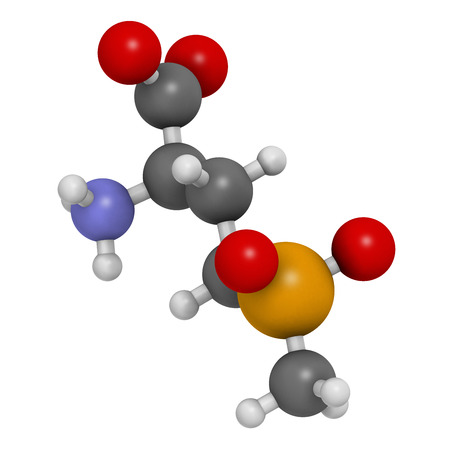 desiccation: Glufosinate (phosphinothricin) nonselective herbicide molecule. 3D rendering.  Transgenic (GMO) crops have been created that are resistant to glufosinate. Atoms are represented as spheres with conventional color coding: hydrogen (white), carbon (grey), ox