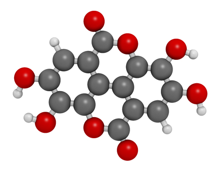 vegetable carbon: Ellagic acid dietary supplement molecule. 3D rendering.  Atoms are represented as spheres with conventional color coding: hydrogen (white), carbon (grey), oxygen (red).