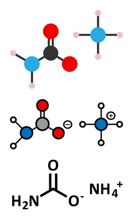 urea: Ammonium carbamate, chemical structure. Stylized 2D renderings and conventional skeletal formula.
