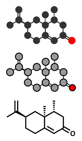 insect repellent: Nootkatone natural insect repellent molecule. Present in grapefruit. Stylized 2D renderings and conventional skeletal formula.