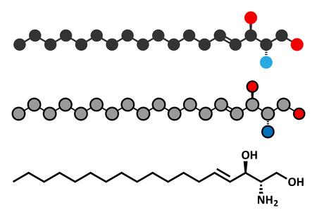 lipid a: Sphingosine lipid molecule.