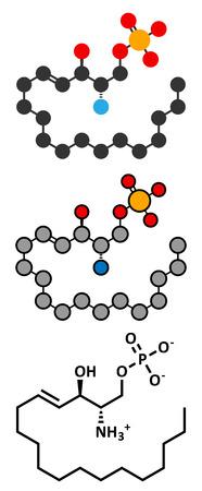 phosphate: Sphingosine-1-phosphate (S1P) signaling molecule. Stylized 2D renderings and conventional skeletal formula.
