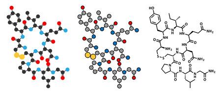 Molécule d'hormone d'oxytocine. Des représentations 2D stylisées et une formule squelettique conventionnelle.