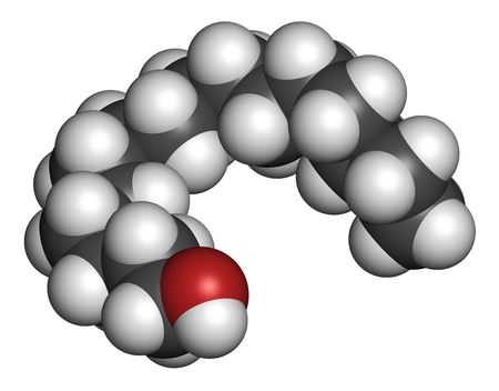 constituent: Cetyl (or palmityl) alcohol molecule. Constituent of cetostearyl alcohol (cetearyl alcohol, cetylstearyl alcohol). 3D rendering. Atoms are represented as spheres with conventional color coding: hydrogen (white), carbon (grey), oxygen (red).