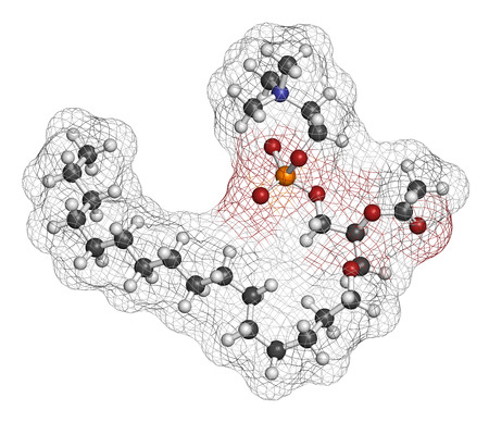 activating: Platelet Activating Factor (PAF) signaling molecule. 3D rendering. Atoms are represented as spheres with conventional color coding: hydrogen (white), carbon (grey), oxygen (red), nitrogen (blue), phosphorus (orange).
