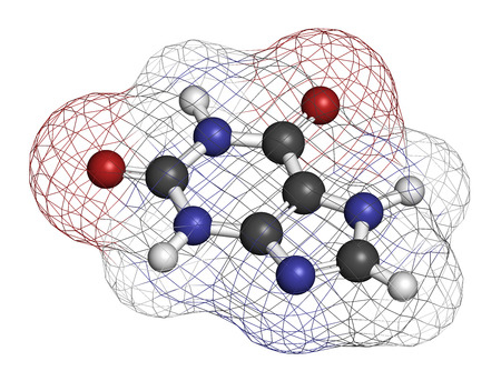 oxidase: Xanthine purine base molecule. 3D rendering. Atoms are represented as spheres with conventional color coding: hydrogen (white), carbon (grey), nitrogen (blue), oxygen (red). Stock Photo