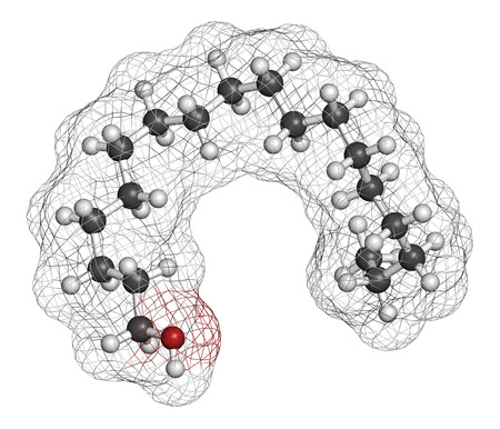 3d carbon: Stearyl alcohol molecule. Constituent of cetostearyl alcohol (cetearyl alcohol, cetylstearyl alcohol). 3D rendering. Atoms are represented as spheres with conventional color coding: hydrogen (white), carbon (grey), oxygen (red).