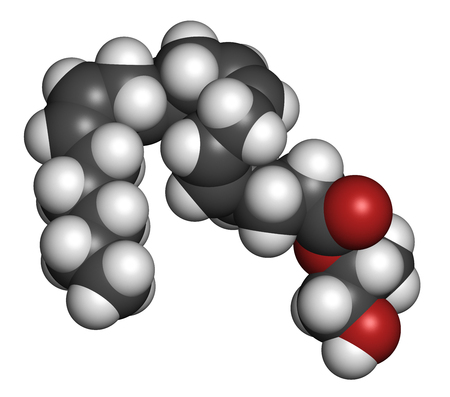 neurotransmitter: 2-Arachidonoylglycerol (2-AG) endocannabinoid neurotransmitter molecule. 3D rendering. Atoms are represented as spheres with conventional color coding: hydrogen (white), carbon (grey), oxygen (red). Stock Photo