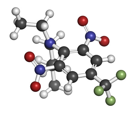 fluorine: Benfluralin herbicide molecule. 3D rendering. Atoms are represented as spheres with conventional color coding: hydrogen (white), carbon (grey), oxygen (red), nitrogen (blue), fluorine (light green). Stock Photo