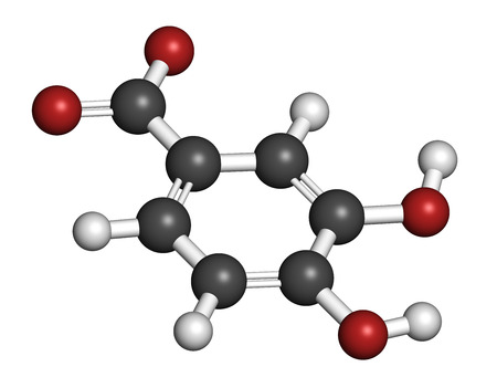 antioxidant: Protocatechuic acid (PCA) green tea antioxidant molecule. 3D rendering. Atoms are represented as spheres with conventional color coding: hydrogen (white), carbon (grey), oxygen (red). Stock Photo