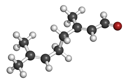 3d carbon: Geranial lemon fragrance molecule. 3D rendering. Atoms are represented as spheres with conventional color coding: hydrogen (white), carbon (grey), oxygen (red). Stock Photo