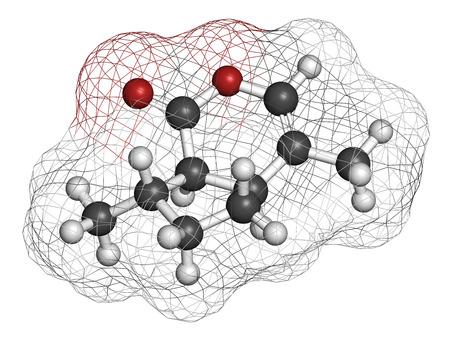 catnip: Nepetalactone catnip cat attractant molecule. 3D rendering. Atoms are represented as spheres with conventional color coding: hydrogen (white), carbon (grey), oxygen (red).