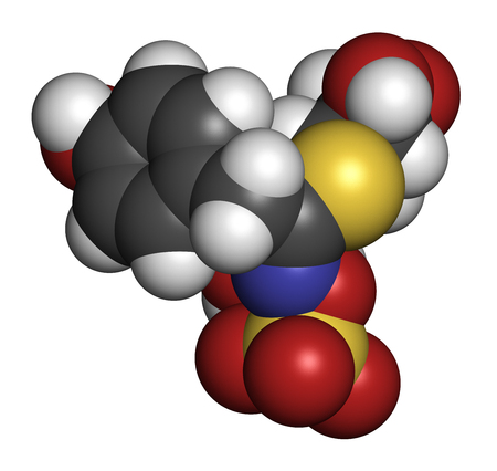 3d nitrogen: Sinalbin glucosinolate molecule. Present in seeds of white mustard (Sinapis alba). 3D rendering. Atoms are represented as spheres with conventional color coding: hydrogen (white), carbon (grey), oxygen (red), nitrogen (blue), sulfur (yellow).