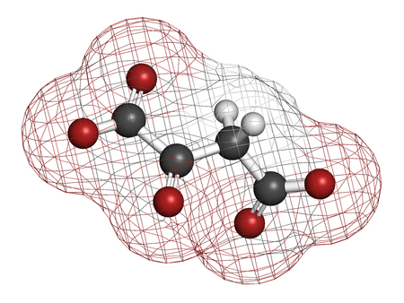 urea: Oxaloacetic acid (oxaloacetate) metabolic intermediate molecule. 3D rendering. Atoms are represented as spheres with conventional color coding: hydrogen (white), carbon (grey), oxygen (red).
