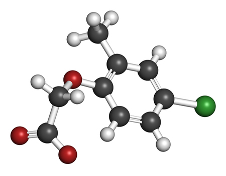 broadleaf: MCPA (2-methyl-4-chlorophenoxyacetic acid) herbicide molecule. 3D rendering. Atoms are represented as spheres with conventional color coding: hydrogen (white), carbon (grey), oxygen (red), chlorine (green).