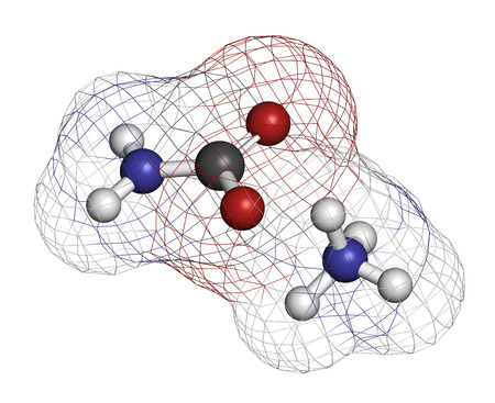 urea: Ammonium carbamate, chemical structure. 3D rendering. Atoms are represented as spheres with conventional color coding: hydrogen (white), carbon (grey), oxygen (red), nitrogen (blue).