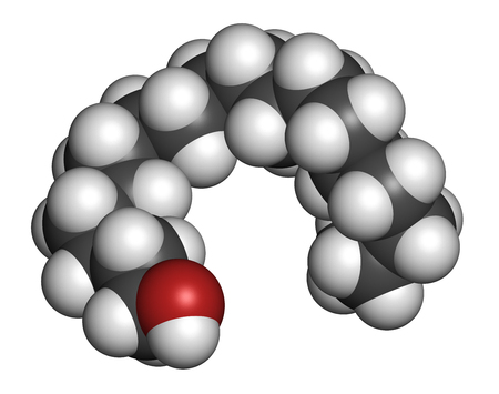 constituent: Stearyl alcohol molecule. Constituent of cetostearyl alcohol (cetearyl alcohol, cetylstearyl alcohol). 3D rendering. Atoms are represented as spheres with conventional color coding: hydrogen (white), carbon (grey), oxygen (red).