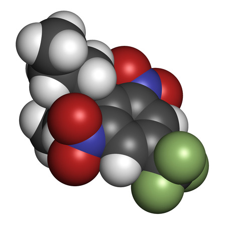 germinate: Trifluralin herbicide molecule. 3D rendering. Atoms are represented as spheres with conventional color coding: hydrogen (white), carbon (grey), nitrogen (blue), oxygen (red), fluorine (light green).