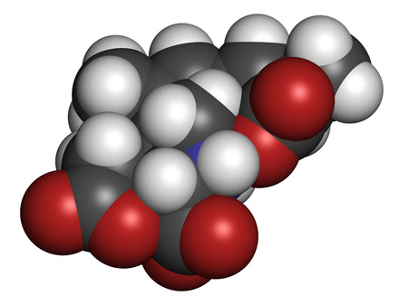 asp: Domoic acid algae poison molecule. Responsible for amnesic shellfish poisoning (ASP). 3D rendering. Atoms are represented as spheres with conventional color coding: hydrogen (white), carbon (grey), nitrogen (blue), oxygen (red).