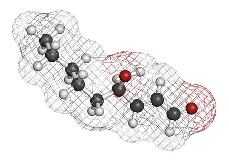 lipid: 4-Hydroxynonenal (HNE) molecule. Metabolite produced by lipid peroxidation of polyunsaturated omega-6 fatty acids. 3D rendering. Atoms are represented as spheres with conventional color coding: hydrogen (white), carbon (grey), oxygen (red).