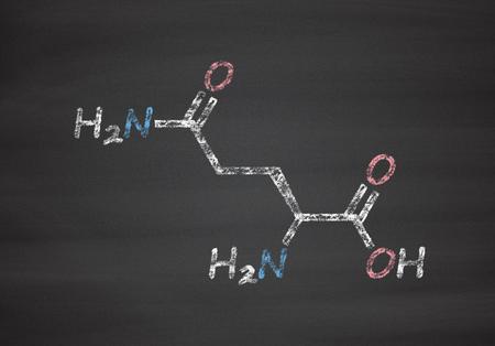 Glutamine (L-Glutamine, Gin, Q) Molécule d'acides aminés. Craie sur tableau noir, illustration de style.