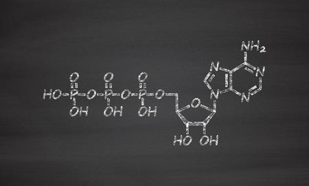 nucleotide: Adenosine triphosphate (ATP) molecule. Functions as neurotransmitter, RNA building block, energy transfer molecule, etc. Chalk on blackboard style illustration. Stock Photo