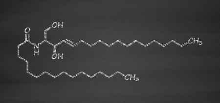 membrana cellulare: Ceramide molecola lipidica della membrana cellulare. Gesso sulla lavagna stile illustrazione.
