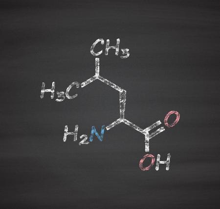 leu: Leucine (l-leucine, Leu, L) amino acid molecule. Chalk on blackboard style illustration.