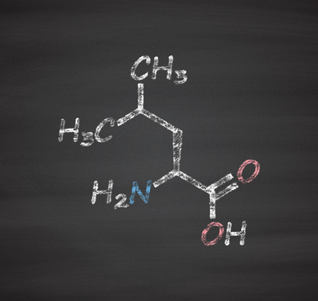 polypeptide: Leucine (l-leucine, Leu, L) amino acid molecule. Chalk on blackboard style illustration.