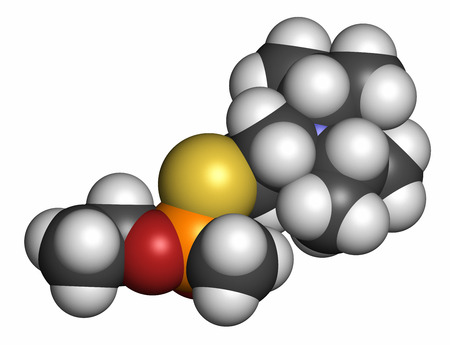 VX nerve agent molecule (chemical weapon). 3D rendering. Atoms are represented as spheres with conventional color coding: hydrogen (white), carbon (grey), oxygen (red), phosphorus (orange), sulfur (yellow).