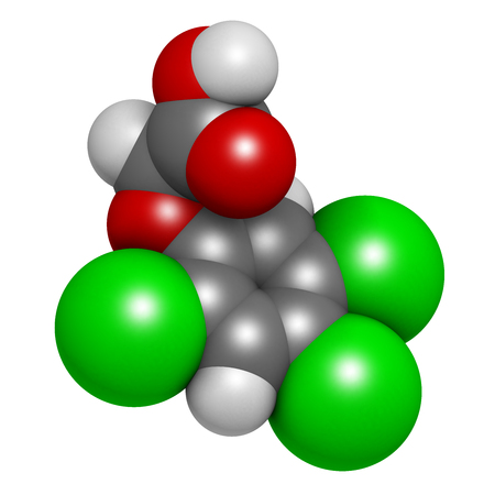 herbicide: 2,4,5-trichlorophenoxyacetic acid (2,4,5-T) herbicide molecule. Ingredient of Agent Orange. 3D rendering. Atoms are represented as spheres with conventional color coding: hydrogen (white), carbon (grey), oxygen (red), chlorine (green).