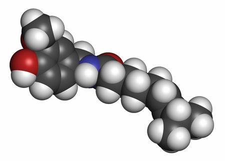 capsaicin: Capsaicin chili pepper molecule. Used in food, drugs, pepper spray, etc.  3D rendering. Atoms are represented as spheres with conventional color coding: hydrogen (white), carbon (grey), oxygen (red), nitrogen (blue). Stock Photo