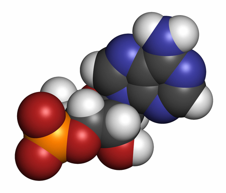 phosphate: Cyclic adenosine monophosphate (cAMP) second messenger molecule. 3D rendering. Atoms are represented as spheres with conventional color coding: hydrogen (white), carbon (grey), oxygen (red), nitrogen (blue), phosphorus (orange).