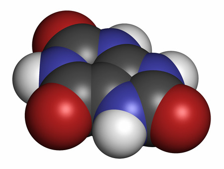 purine: Uric acid molecule. High blood levels lead to gout disease. 3D rendering. Atoms are represented as spheres with conventional color coding: hydrogen (white), carbon (grey), oxygen (red), nitrogen (blue).