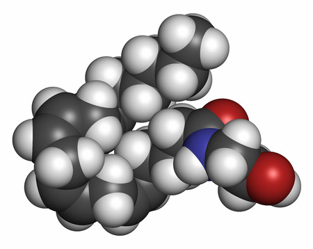 Anandamide endogenous cannabinoid neurotransmitter molecule. 3D rendering. Atoms are represented as spheres with conventional color coding: hydrogen (white), carbon (grey), oxygen (red), nitrogen (blue).