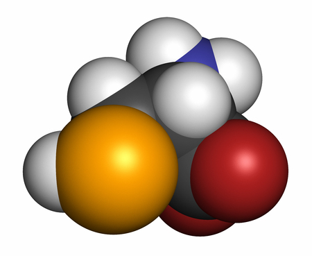 sec: Selenocysteine (Sec, U) amino acid molecule. Called the 21st proteinogenic amino acid, present in selenoproteins. 3D rendering. Atoms are represented as spheres with conventional color coding: hydrogen (white), carbon (grey), oxygen (red), nitrogen (blue)