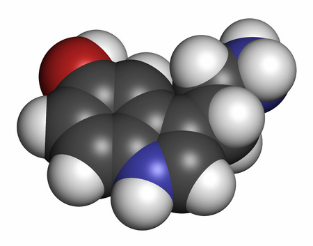 neurotransmitter: Serotonin neurotransmitter molecule. 3D rendering. Atoms are represented as spheres with conventional color coding: hydrogen (white), carbon (grey), oxygen (red), nitrogen (blue).