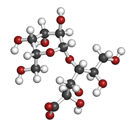 Lactobionic acid (lactobionate) molecule. Commonly used additive in food products, medicinal products and cosmetics. 3D rendering. Atoms are represented as spheres with conventional color coding: hydrogen (white), carbon (grey), oxygen (red).