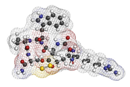 anticoagulant: Eptifibatide anticoagulant drug molecule. 3D rendering. Atoms are represented as spheres with conventional color coding: hydrogen (white), carbon (grey), nitrogen (blue), oxygen (red), sulfur (yellow).