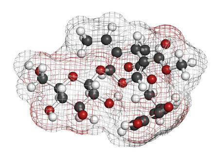 pungency: Oleuropein olive component molecule. In part responsible for pungency of virgin olive oil, may have beneficial properties. 3D rendering. Atoms are represented as spheres with conventional color coding: hydrogen (white), carbon (grey), oxygen (red).