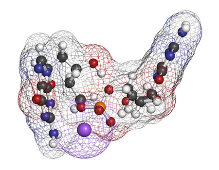 Guadecitabine cancer drug molecule (DNA methyltransferase inhibitor). 3D rendering. Atoms are represented as spheres with conventional color coding: hydrogen (white), carbon (grey), nitrogen (blue), oxygen (red), phosphorus (orange). Stock Photo