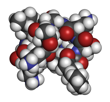 antibiotic: Colistin antibiotic drug molecule. 3D rendering. Atoms are represented as spheres with conventional color coding: hydrogen (white), carbon (grey), nitrogen (blue), oxygen (red).