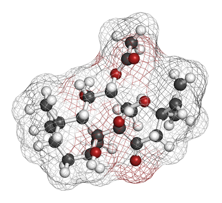 zvýšil: Forskolin (coleonol) molecule. Activates the enzyme adenylyl cyclase, resulting in increased levels of cAMP. 3D rendering. Atoms are represented as spheres with conventional color coding: hydrogen (white), carbon (grey), oxygen (red).
